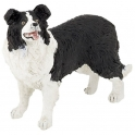 Border Collie Ref.54008
